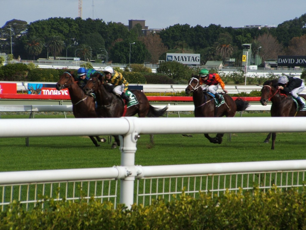 The Power Of Three Horse Racing System