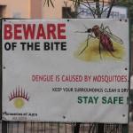I Survived Dengue Fever