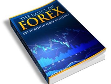 Basics Of Forex - Insider Techniques