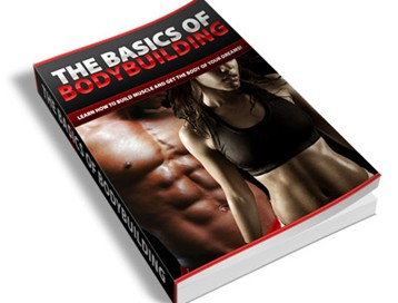 The Basics Of Body Building