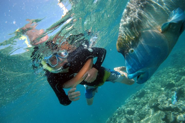 Danny Cutts At The Great Barrier Reef